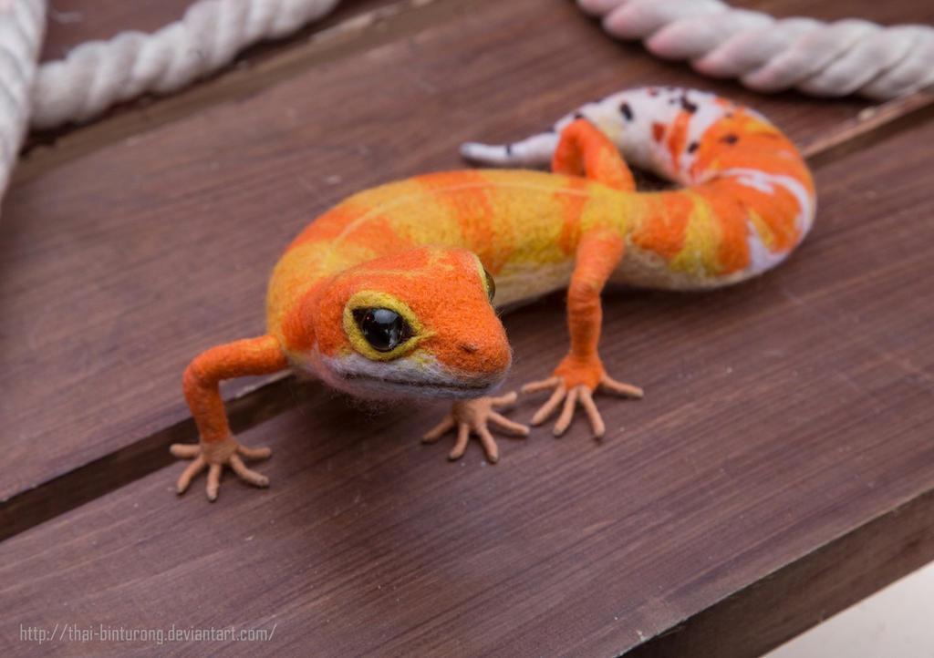 Leopard Gecko by thai-binturong