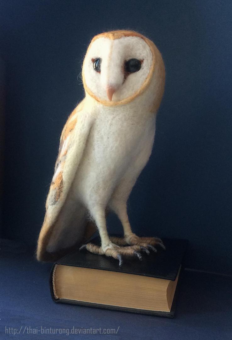 Barn Owl 2 by thai-binturong