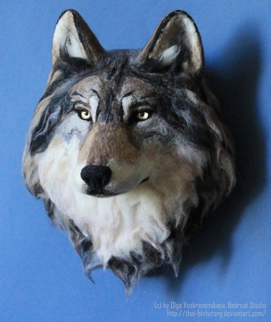 the Wolf by thai-binturong