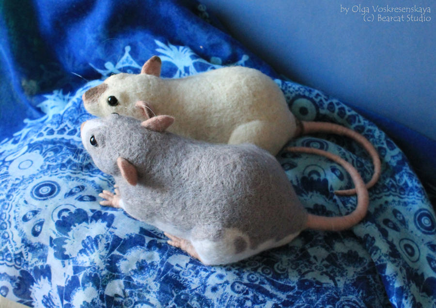 Two felted rats by thai-binturong