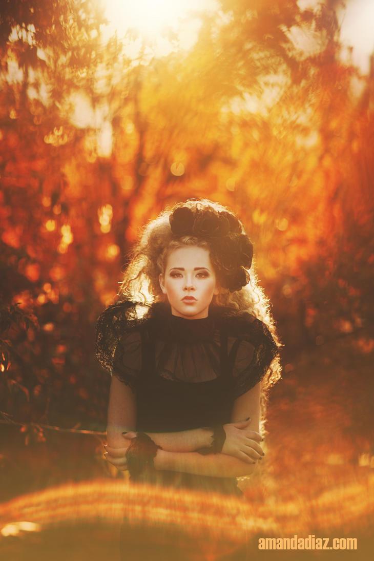 Sun Fire by Amanda-Diaz