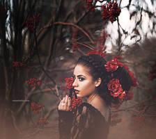 Berries by Amanda-Diaz