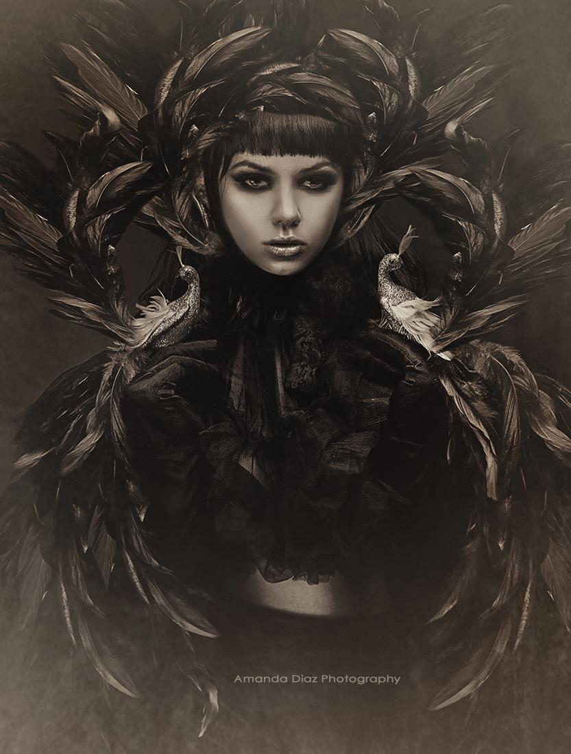 Birds Of a Feather by Amanda-Diaz