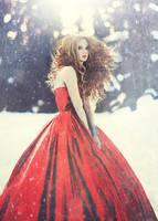 Winter Sun by Amanda-Diaz
