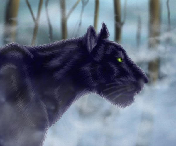 http://fc07.deviantart.net/fs8/i/2005/334/6/b/Panther_in_the_fog_by_mirri.jpg