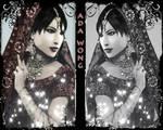 Potrait of a Lady _ Mirrors Version