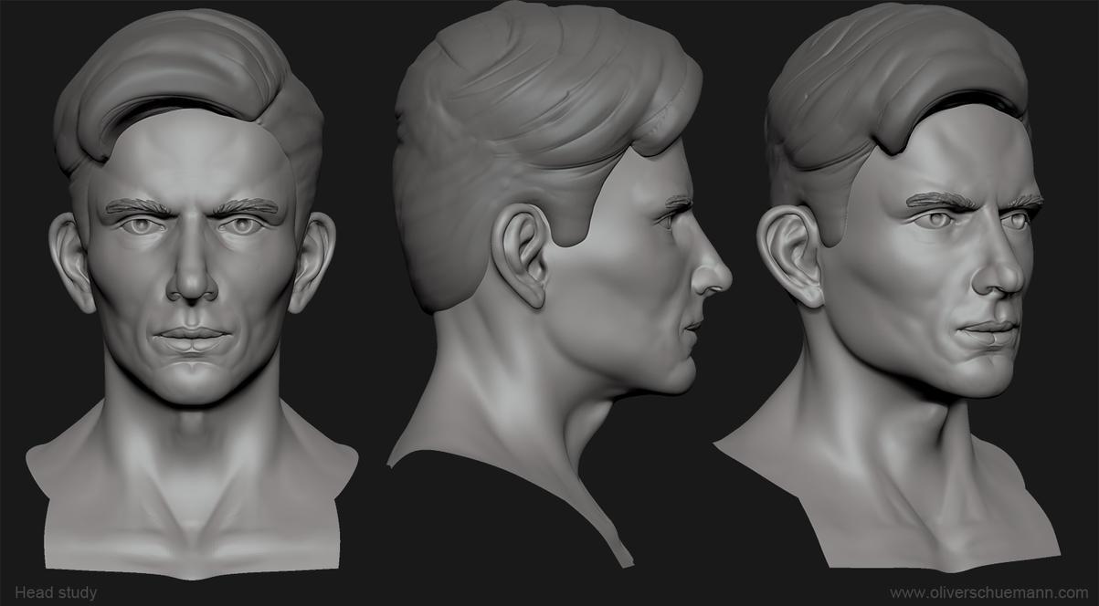 Head Study 143011 by Pix-man
