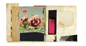 collage ff