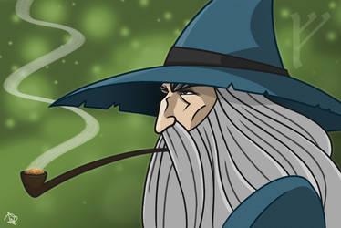 Gandalf by Todd-the-fox