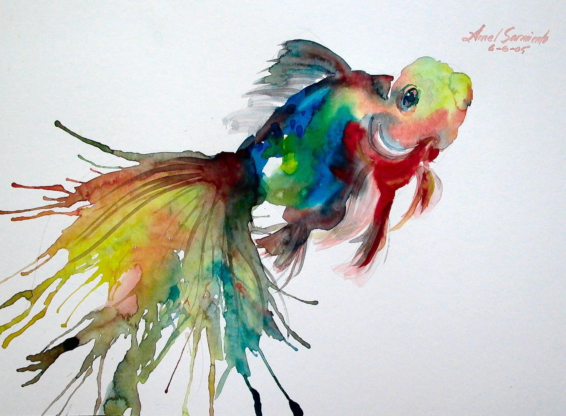 1000 images about watercolour animal based art on for How to paint a fish