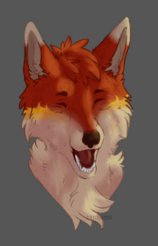 temper fox