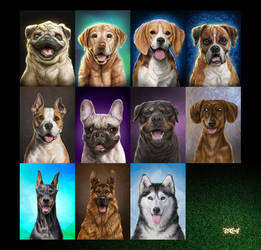 00 Puppy Portraits Cover