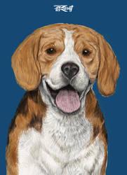 02 Beagle Basic Color
