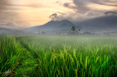 There is a Hope by adityapudjo