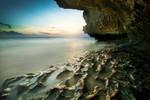 Bali Blue Point