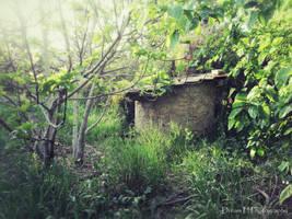 Wishing Well in a Garden by dreamh
