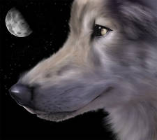 Wolves of Moonlight by Tamiel-Angel