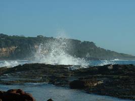 ocean spray strwberrystk by strwberrystk