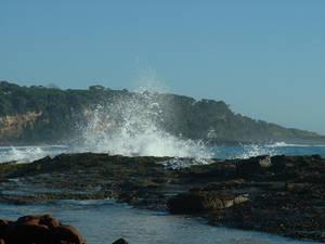 ocean spray strwberrystk