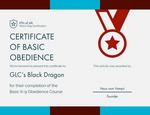 BK9O - GLC's Black DRagon