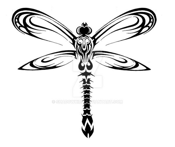 Dragonfly Tattoo Line Drawing : Tribal dragonfly design by shadowkira on deviantart