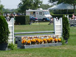 Hampton Classic Jump