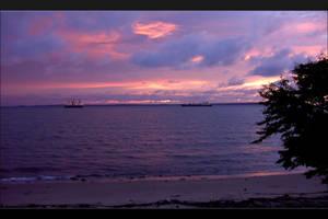 Purple Sky by wittus