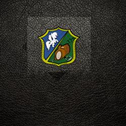 Badge 3 (hoodie)