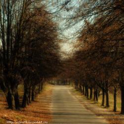 Autumn way