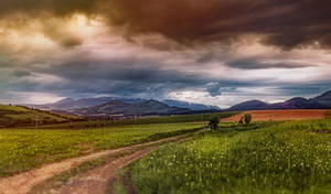 Cloudy in the countryside
