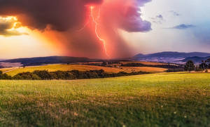 Lightning in the meadow