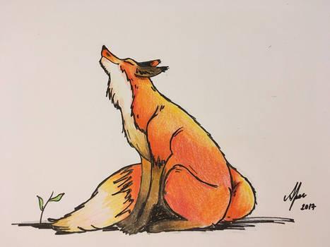 Happy Fox