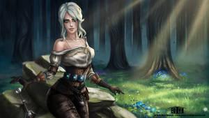 The Witcher III - Ciri (NSFW Optional) by eollynart