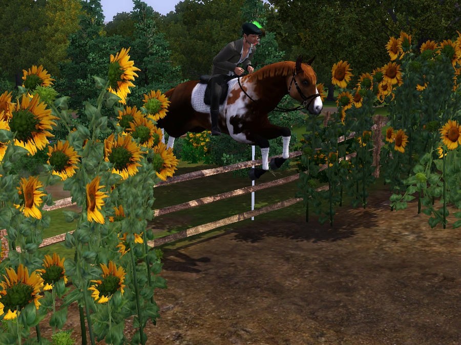 How do I get a horse in the sims 3 ps3!!!!!!!!!!! - The ...
