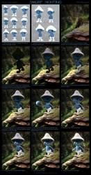 Smurf Sighting - Process