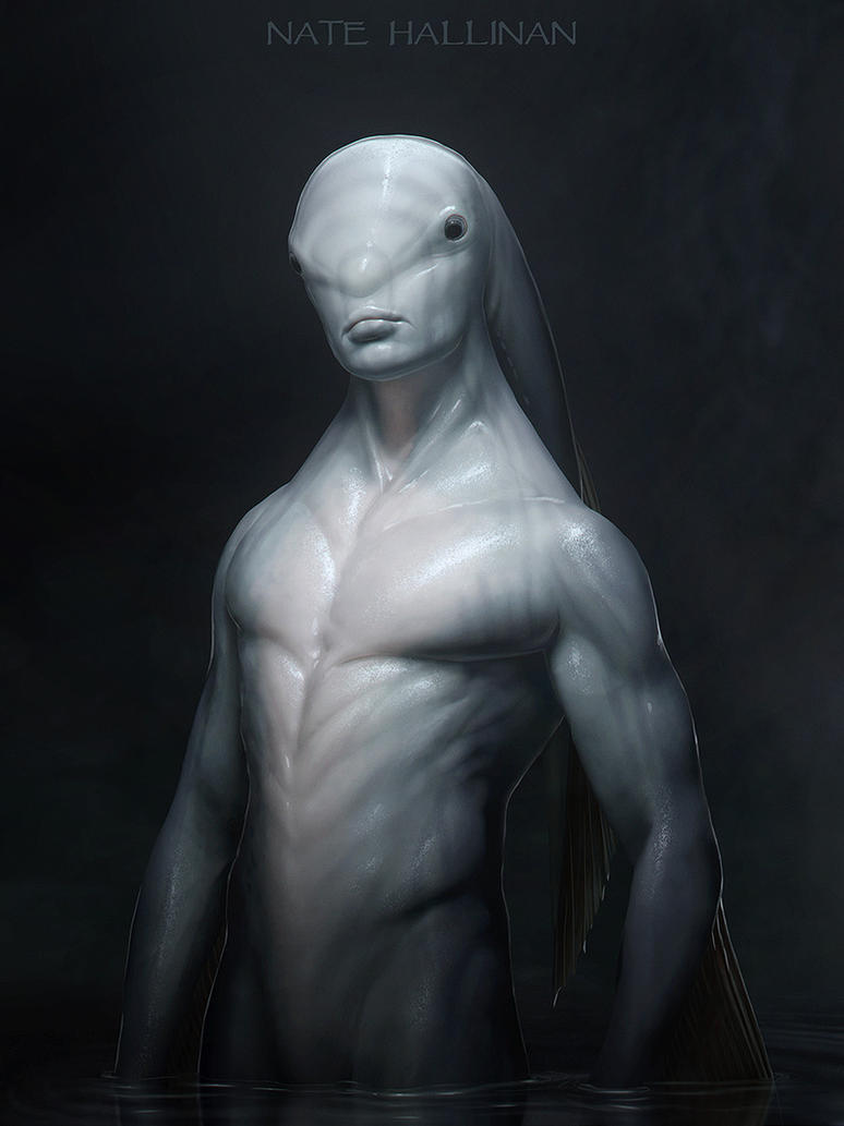 Male Zora Concept 01 by NateHallinanArt