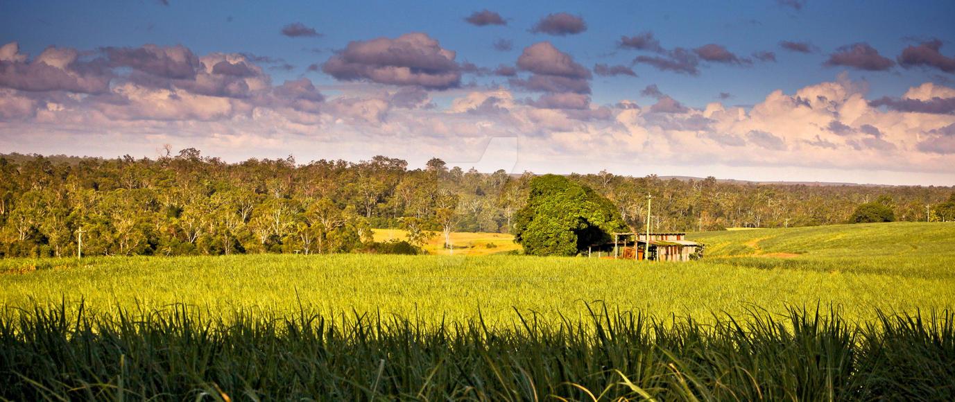A farmers life by lamourphotography-au