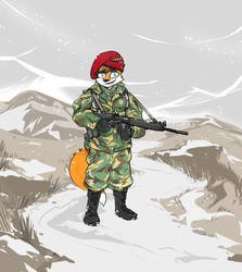 Commission: Paratrooper by Spurkeht