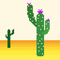 Cactuses 09/10.03.20