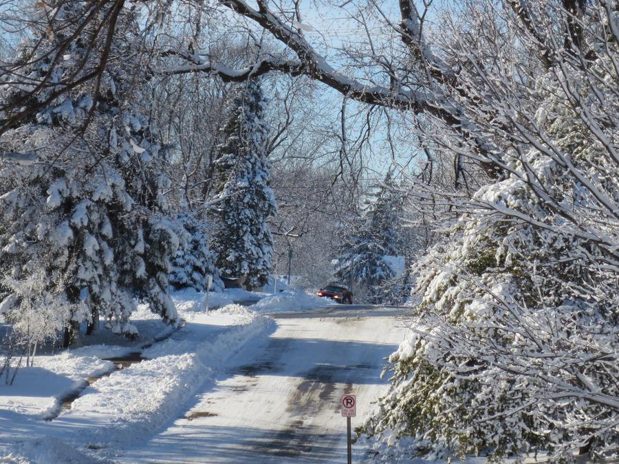 Winter Path by hyenacub-stock