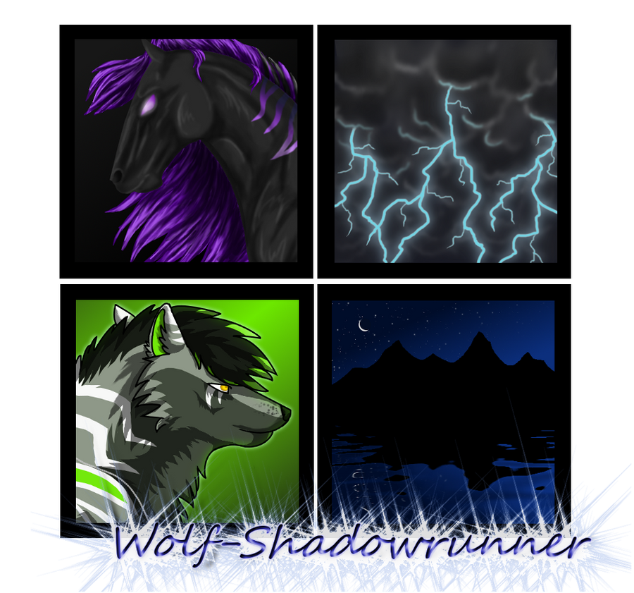 Wolf-Shadowrunner's Profile Picture