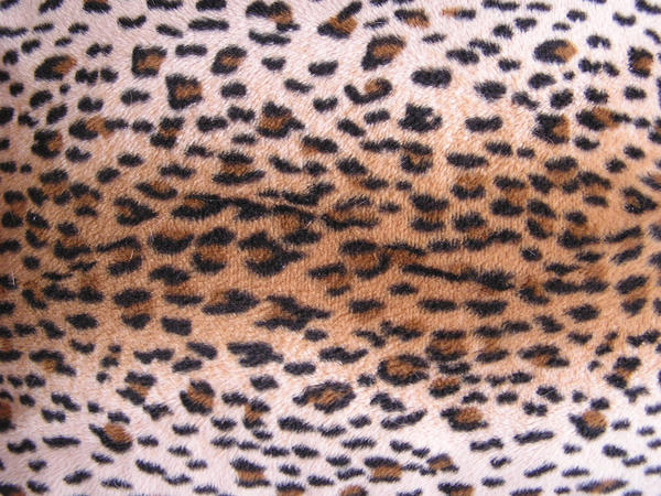 Leopard Fur by stock-kitty