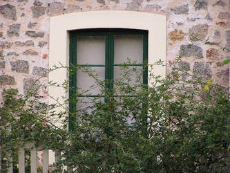 Stone Cottage Series 21