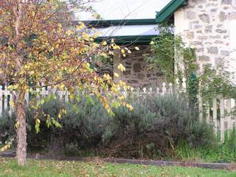 Stone Cottage Series 22