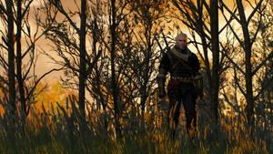 The Witcher 3 - Patient Geralt by Amachow
