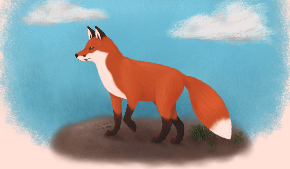 Fox Painting by Selma-Josephine