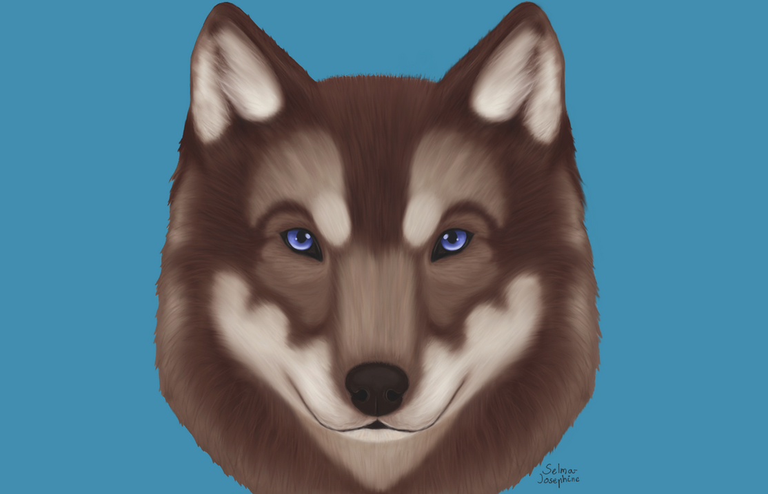 Sapphire Wolf by Selma-Josephine