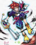 Sora:custom