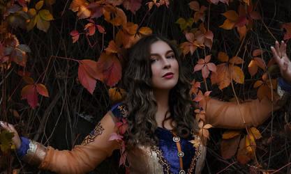 Colorful autumn 2