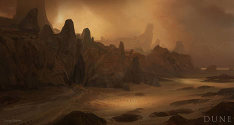 Lucas-staniec-1-dune-low